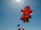 kite182NKB_09