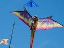 kite18KB_24