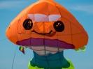kite18KB_36